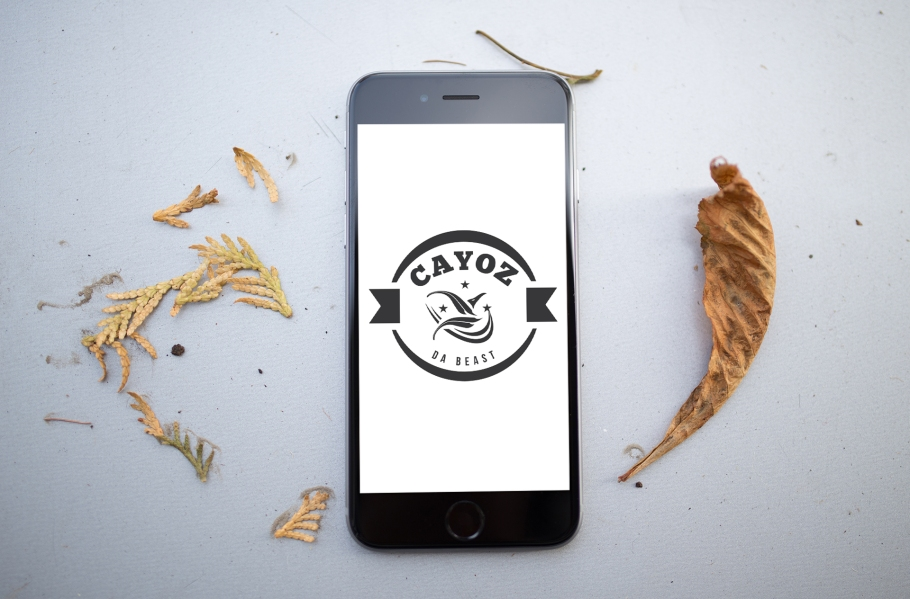 Cayoz_logo_iPhone 6